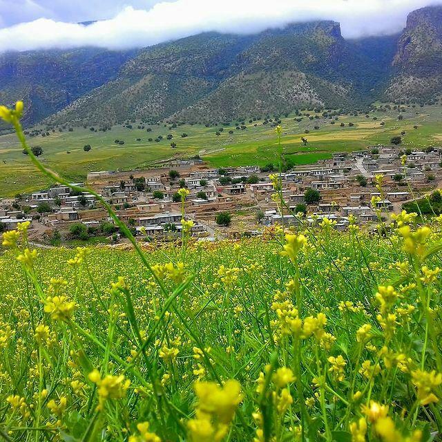 روستای حسن گاوداری
