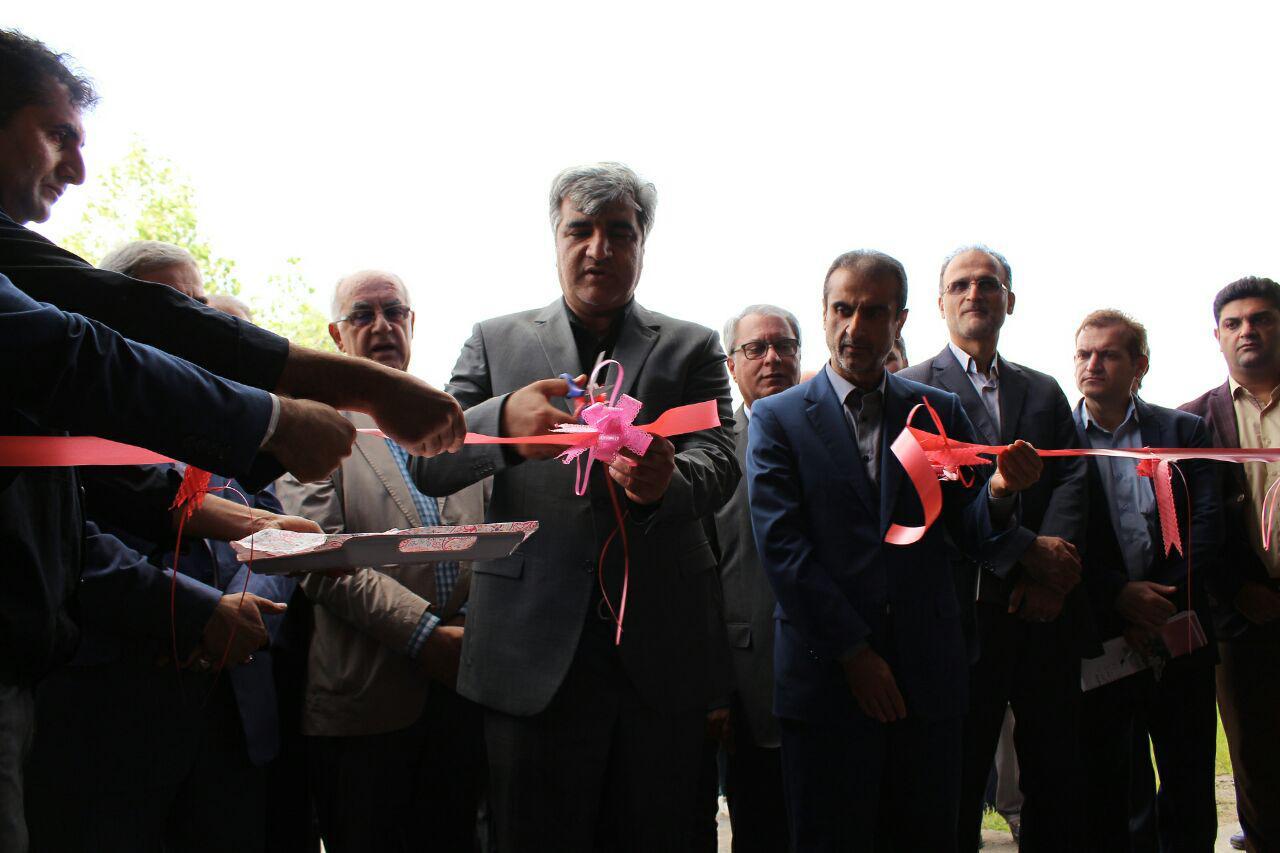 افتتاح کارخانه تولید لامپ کم مصرف در رشت در هفته دولت 97