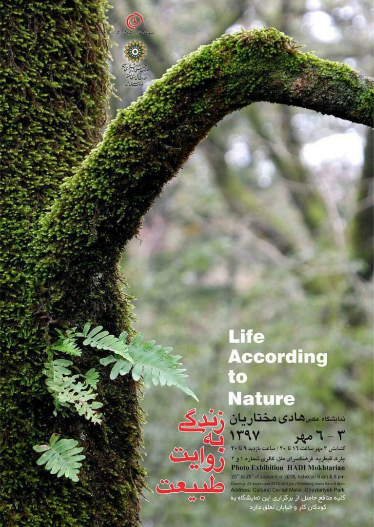 زندگی به روایت طبیعت
