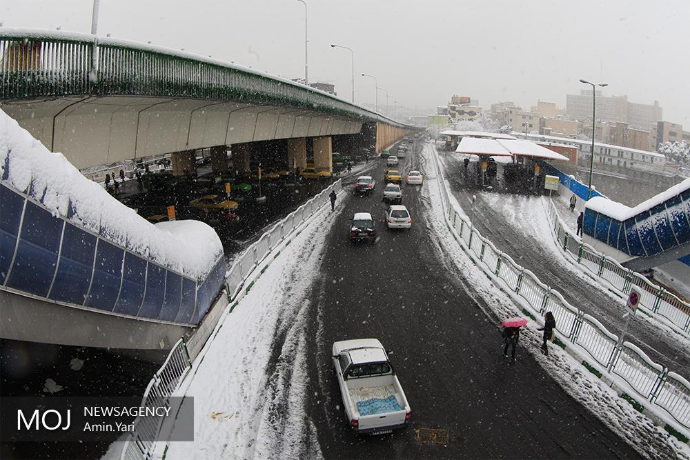بارش برف تهران را سپیدپوش کرد