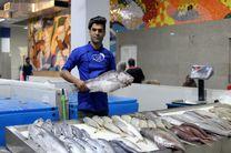 توزیع ماهی در 21 فروشگاه بندرعباس/بازار ماهی تا اطلاع ثانوی تعطیل است
