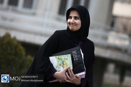 حاشیه جلسه هیات دولت - ۲ بهمن ۱۳۹۸/جنیدی