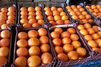 ذخیره یک هزار و 300 تن میوه برای توزیع در روزهای آخر اسفند امسال