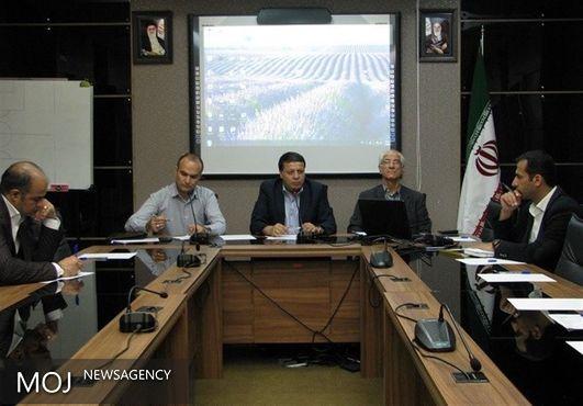 جلسه توجیهی مسوولان تدارکات تیمهای ملی برگزار شد