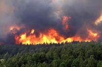 آتشسوزی ۱۳۵ هکتار از مزارع و منابع ملی در بروجرد