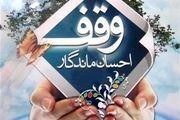 ثبت 2 وقف جدید در طرح آرامش بهاری 1400 در نجف آباد