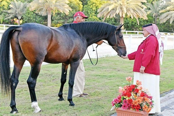 هدیه ملکه انگلیس به پادشاه بحرین؛ چراغ سبزی برای ادامه سرکوب