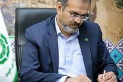 صنایع دستی، سفیران فرهنگ و هنر جمهوری اسلامی ایران