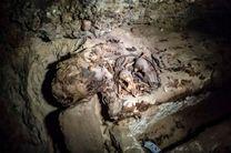 احتمال شناسایی اجساد مومیایی شده از سوی پزشکی قانونی وجود دارد
