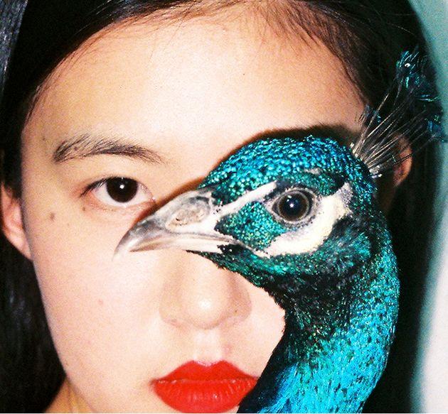 عکاس چینی آثار غیر اخلاقی خودکشی کرد