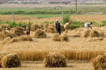 شاخص قیمت تولید کننده زراعت 10.39درصد کاهش یافت