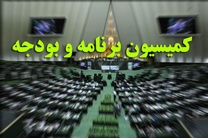 تاجگردون رییس کمیسیون برنامه و بودجه شد / انتخاب محبینیا و قوامی در کرسی نواب رییس