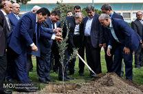 کاشت درخت توسط علی لاریجانی