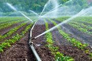 15هزار بهرهبردار کشاورزی به روشهای نوین آبیاری روی آوردند