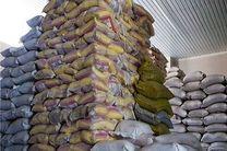 آغاز توزیع برنج خارجی احتکار شده در هرمزگان