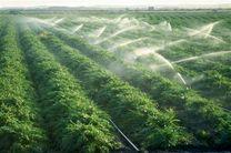 ۲۰ هزار فرصت شغلی در قصر شیرین با بهرهبرداری از طرحهای کشاورزی ایجاد می شود