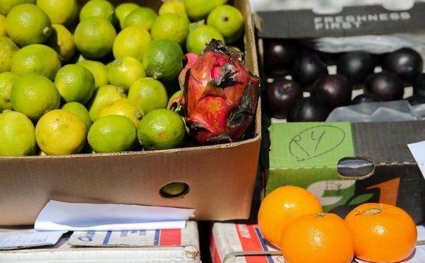 کشف بیش از ۶ تن میوه قاچاق در میناب