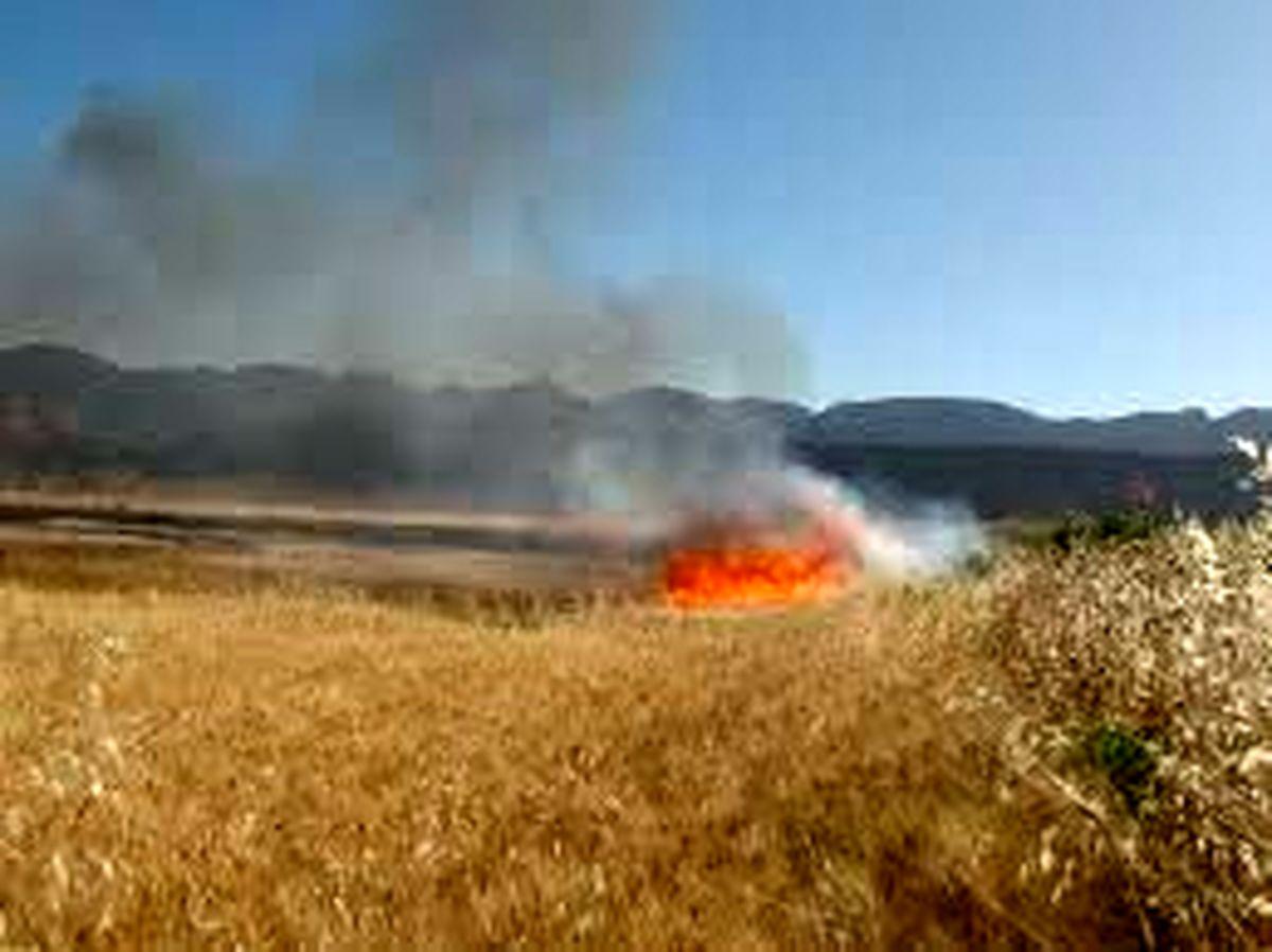 بیش از 50 هکتار ازمزارع کشاورزان ایوانی طعمه حریق شد