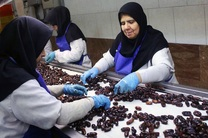 اختصاص تسهیلات به واحدهای صنایع بستهبندی و فرآوری هرمزگان