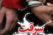 دستگیری8 سارق در اسدآباد