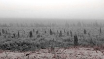 گزارشی مبنی بر آلودگی نفتی در هورالعظیم دریافت نکردیم