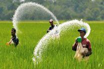کشاورزان کود شیمیایی را براساس توصیه کارشناسان مصرف کنند