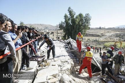 سگهای جستجوگر و زنده یاب در مناطق زلزلهزده کرمانشاه