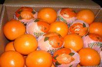 کشف ۴ تن پرتقال قاچاق در اصفهان