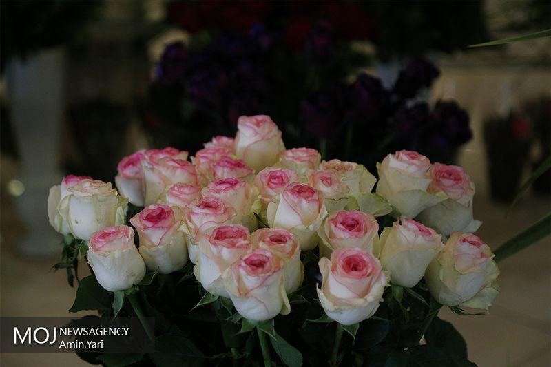 اشتغالزایی در تولید داخلی گل و گیاه ممکن است
