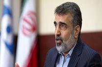 ایران توانایی غنی سازی ۴۰ تا ۶۰ درصدی اورانیوم را دارد