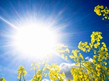 افزایش یک تا دو درجه ای دمای هوا دراصفهان