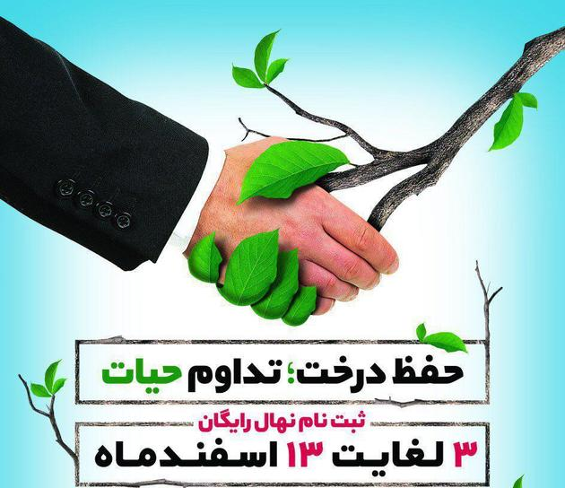 آغاز توزیع 80 هزار اصله نهال به مناسبت هفته درختکاری در اصفهان
