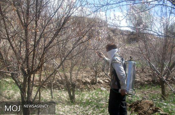 سازمان حفظ نباتات کشور نسبت به توزیع سموم قاچاق هشدار داد