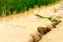 سیل به مزارع کشاورزی و منازل مسکونی بخش خورشرستم خسارت وارد کرد