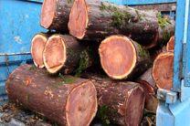 کشف بیش از یک و نیم تن چوب درخت آزاد در شهرستان شفت