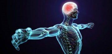 مؤلفههای یک ورزش خوب از لحاظ علمی/ تضمین کننده بقای سلامتی را جدی بگیرید