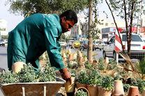 کاشت بیش از 30 هزار اصله نهال و گل در اردبیل