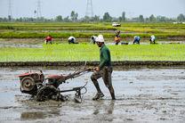 بیش از 600 هزار لیتر سوخت بین کشاورزان تنکابنی توزیع شد