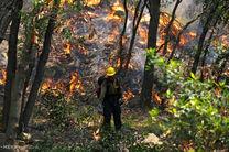 جنگلهای چشمه «ابوالمهدی» در پاسارگاد آتش گرفت