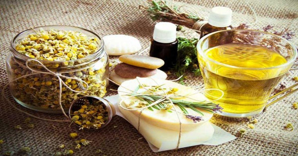 برداشت هرگونه گیاهان دارویی در مهریز ممنوع است