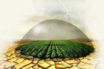 مصوبه دولت درباره پرداخت بدهی ۵۱ هزار میلیارد ریالی صندوق بیمه محصولات کشاورزی به بانک کشاورزی