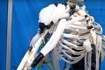 رباتی با ماهیچه هایی شبیه به انسان ساخته شد