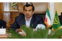 صادرات 90 هزار تن کیوی غرب مازندران در سالجاری
