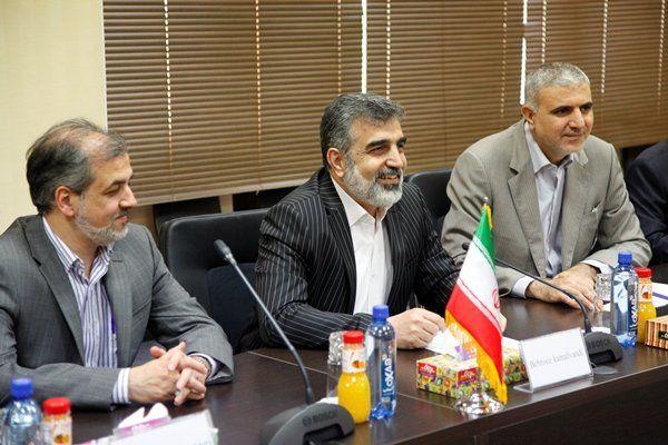 کمالوندی: تمام گزارشات آژانس حاکی از اجرای کامل برجام از سوی ایران است