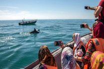 اعطای تسهیلات با سود صفر درصد برای رونق گردشگری دریایی