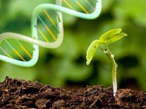 جایزه بزرگ زیستفناوری برگزار میشود