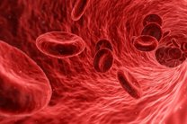 جدیدترین دستاوردهای نرم افزاری گوگل/ تشخیص علائم اولیه سرطان توسط گوگل