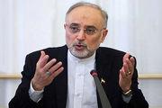 ایران هیچ مشکلی در مسائل فنی برنامههای هسته ای خود ندارد
