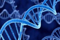 حذف بیماری وراثتی در نطفه آزمایشگاهی امکان پذیر است
