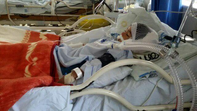 حمله یک سگ به کودک ۵ ساله در بوئین زهرا